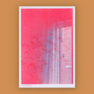 "Taquen. Diario de una pausa, la ausencia de movimiento"" + Risograph"